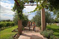 Fra vingård til vingård på sykkel