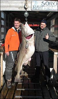 Dette kan være verdensrekord i torsk
