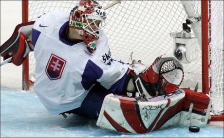 TØNSBERG-KLAR: Karol Krizan, her i aksjon under VM i 2007, er klar for den norske ligaen og Tønsberg. Foto: Dmitry Lovetsky, Ap