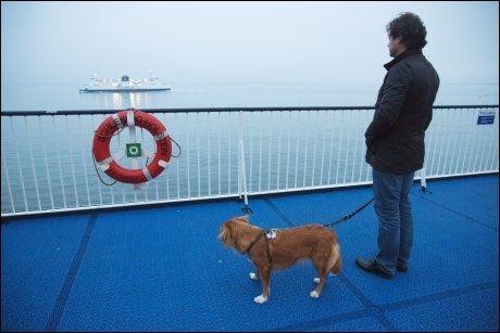 PÅ BØLJAN BLÅ: Luna og eier Marcus Bleasdale om bord på båten mellom Rødby og Puttgarden. Foto: KARIN BEATE NØSTERUD.