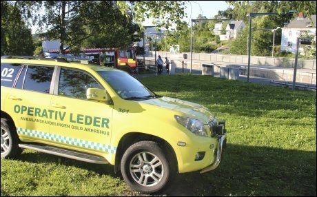 DØDE: 17-åringen skal ha falt ned fra perrongen mellom to vogner, opplyser politiet. Foto: Ole Christian Nordby/Eikerfoto