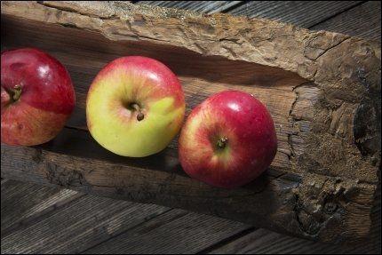 500 GRAM OM DAGEN: Norske myndigheter anbefaler alle å spise minst 500 gram grønnsaker, frukt og bær hver dag. Foto: MAGNAR KIRKNES