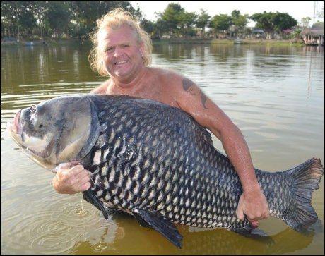 LITT AV EN RUGG: I Palm Tree Lagoon, sydvest for Bangkok, fanget sunnmøringen Per Gunnar Jansen sin største siam-karpe, veid til 64 kilo. - Det er nok den tøffeste og morsomste fisken å fange, sier ålesunderen, som brukte 45 minutter på å få sværingen i land. Foto: Privat
