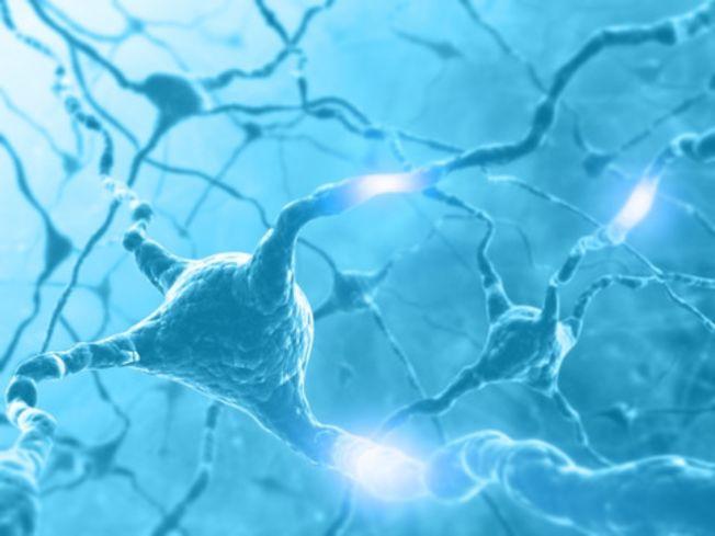 Dette er et illustrasjonsbilde av hjerneceller, og koblingene mellom dem.