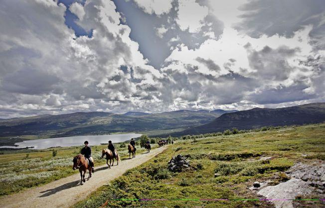 <p>RIDEFERIE: På rideferie får du mektig natur og god mosjon. Bildet er fra Hjerkinn, Dovre.</p><p><br/></p>