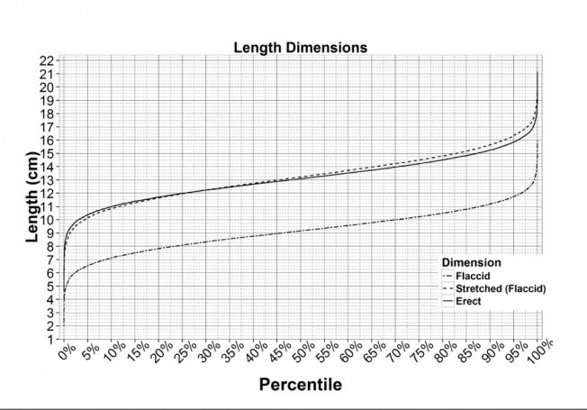 Penis length average statistical