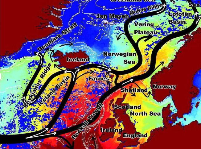 <p>GOLFSTRØMMEN DELER SEG: Havforsker Kjell Arild Orvik har fulgt Golfstrømmen i over 20 år. Han fant også ut at det går to side-strømmer nordover i Norskehavet.</p>