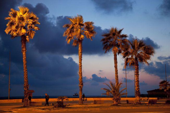 <p>TOSCANAS RIVIERA: Viareggio har en lekker strandpromenade og deilige strender, i tillegg til gode restuaranter og muligheter for shopping.<br/></p>