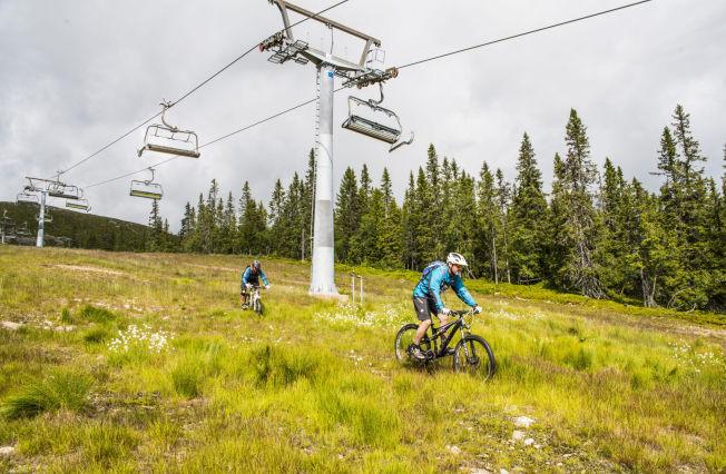 <p>UTFORSYKLING: Mange tar skiheisen opp og sykler skibakkene ned i Trysil, uten at det er anlagt spesielle downhilløyper. Her er Ole Tangnæs og Mattias Lundgren på vei ned heistraseen.<br/></p>