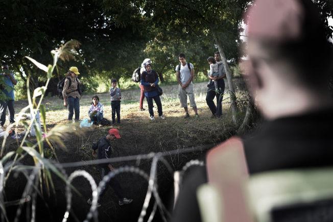<p>GJERDE: Ungarn bygger et 179 km langt gjerde som skal hindre at flyktninger og migranter tar seg inn i landet uten å bli registrert. Situasjonen i Ungarn er noe av det som har gjort inntrykk på mange her hjemme i Norge.<br/></p>