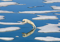 155 land kan stoppe global oppvarming på 2,7 grader