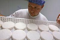 Mild Mester til topps blant verdens beste oster