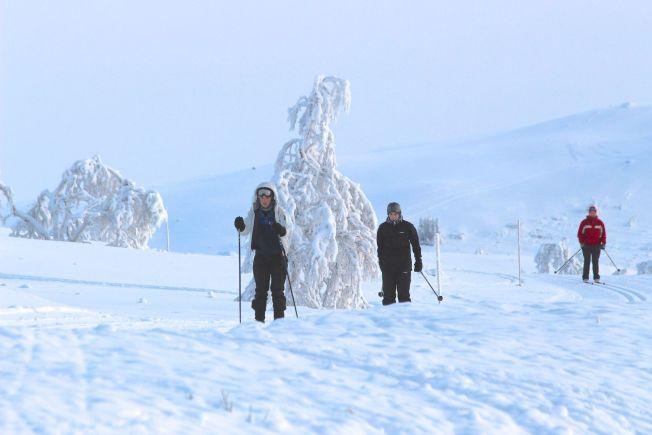 <p>WINTER WONDERLAND: Vinteridyll på Beitostølen i dag. Men snart kommer snøen også flere steder i landet.</p>