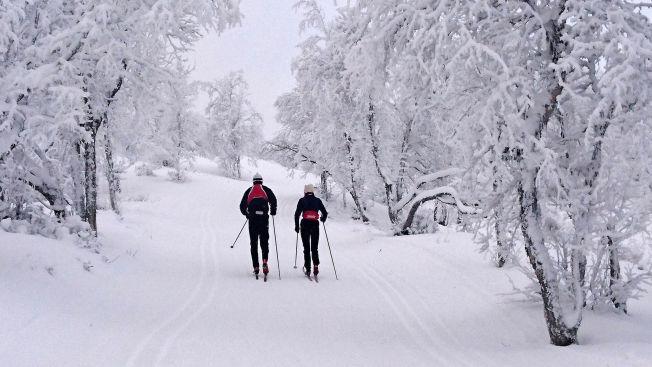 <p>ÅL: Vinterstemning på Ål i dag.<br/></p>