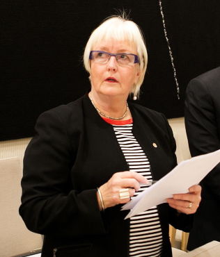 <p>ØVERSTE LEDER: Ellen de Vibe er direktør for Plan- og bygningsetaten i Oslo kommune. Her avbildet under en høring i Stortingets kontroll- og konstitusjonskomite.</p>
