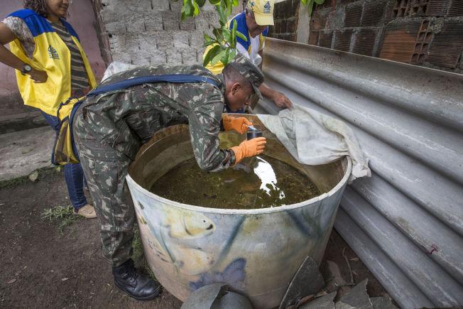 <p>TIL KRIG MOT MYGGEN: I slummen i Recife heller Mauricio (20) fra den brasilianske hæren giftpulver i en drikkevannsbeholder der han har oppdaget mygglarver.<br/></p>