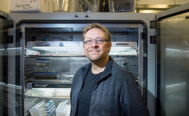 <p>FANT MISSING LINK: Bergensforsker Andreas Hejnol (46) ved Sars-instituttet på Universitetet i Bergen vekker nå internasjonal oppsikt.</p>