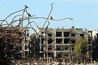 Desperat behov for innsats i Syria