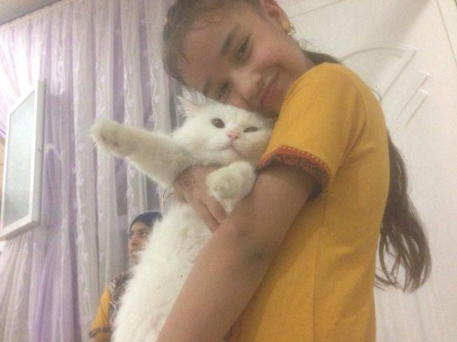 <p>FØR FLUKTEN: Dyrevernorganisasjon som tok seg av Kankush på Lesvos kalte katten for Dias og startet en aksjon for å finne eierne. Dette bildet av Ansab (9) og katten er tatt før flukten fra Irak i oktober i fjor.<br/></p>