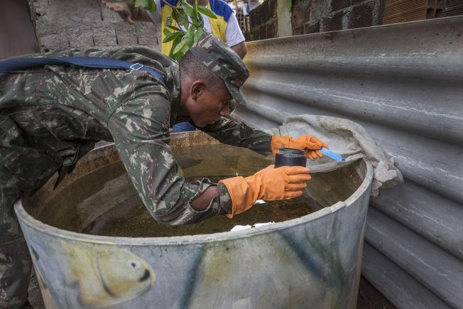 <p>KRIG MOT ZIKA: VG var med da den brasilianske hæren, her ved soldaten Mauricio (20), puttet myggmiddel i drikkevannsbeholdere i slummen i Recife for å drepe mygglarver.</p>