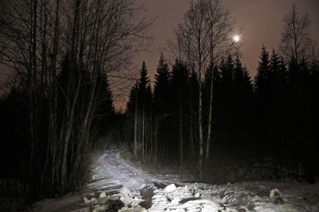 <p>DUMPET LIKET: Den drapssiktede 62-åringen har forklart at han gjemte liket ved en skogsbilvei på Finnskogen i Hedmark, nær svenskegrensa .</p>