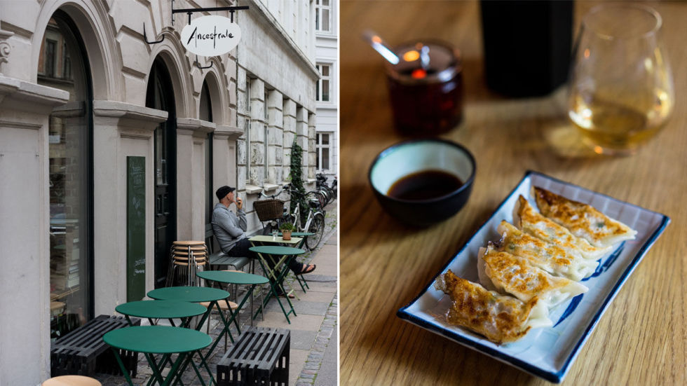 Matguide Til København Fra Smørrebrød Til Taco Her Spiser Du I