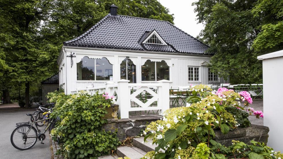 broer i norge norway bøsse dating site